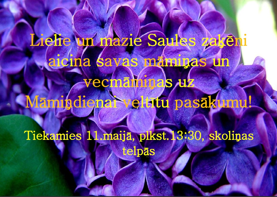 Mamindienas_pasakums_11__maija_1
